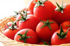 6月から9月が旬!栄養満点で長期保存できるトマトの簡単保存食レシピ【トマトピューレ】