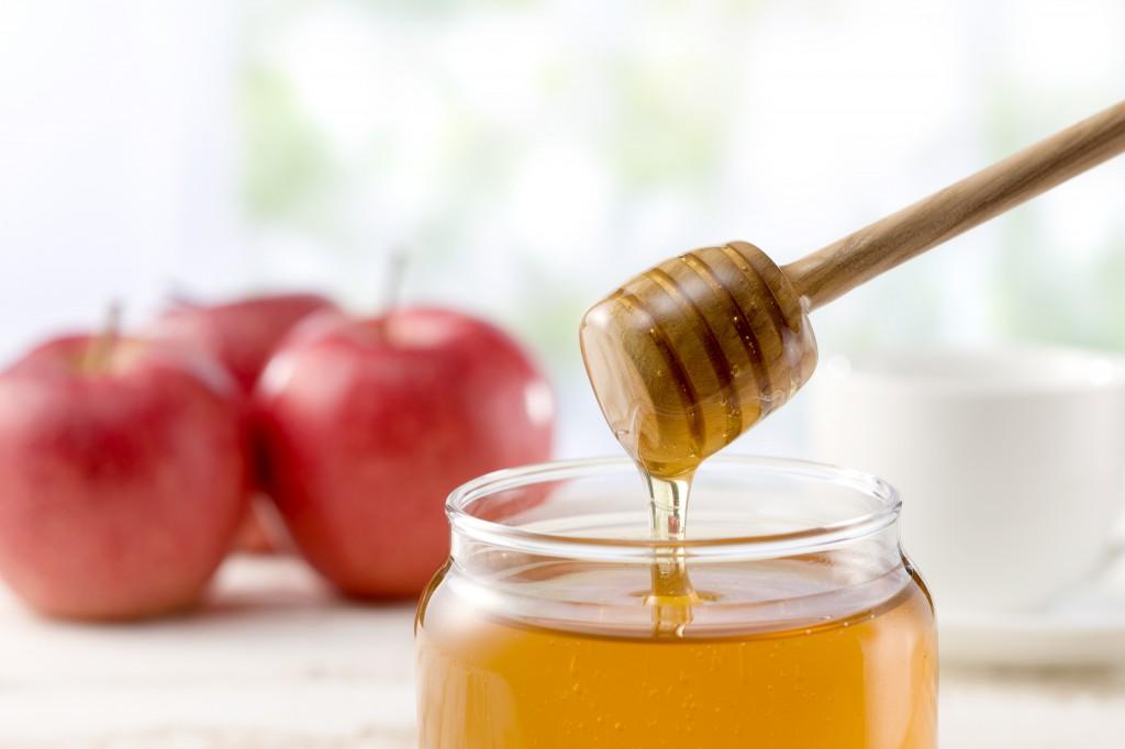 【現地取材】糖度80度以上の純粋はちみつを作る 島根の養蜂家 中山農園さんに行ってきました!